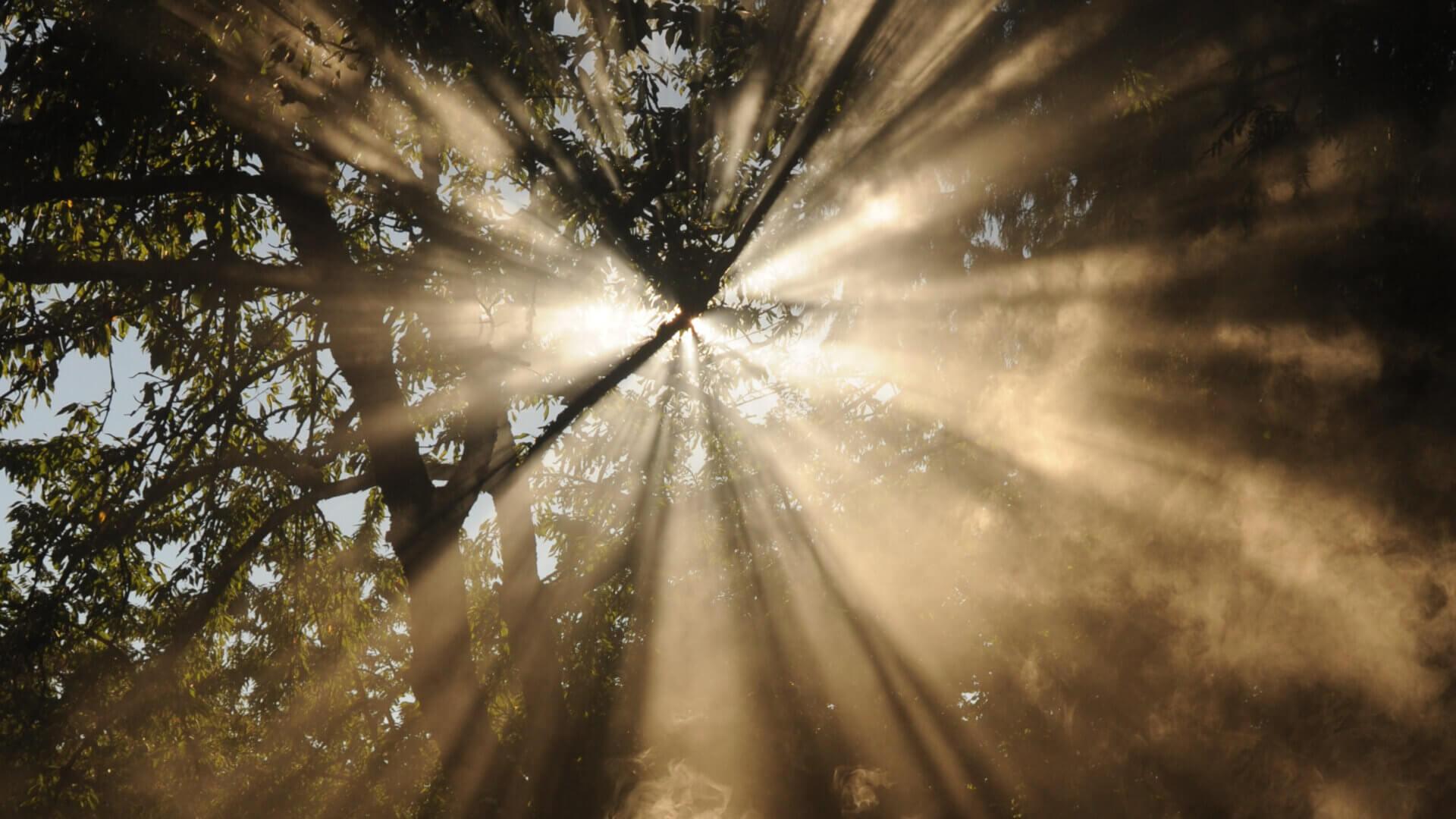 210629_Gebet_glow-Camp_Titelbild